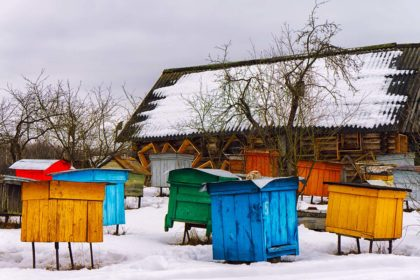 beekeeping tips for december bee well honey farm
