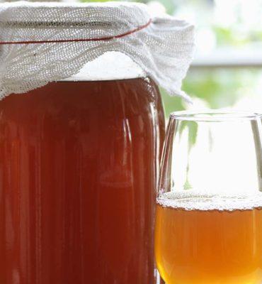 kombucha making class bee well honey farm